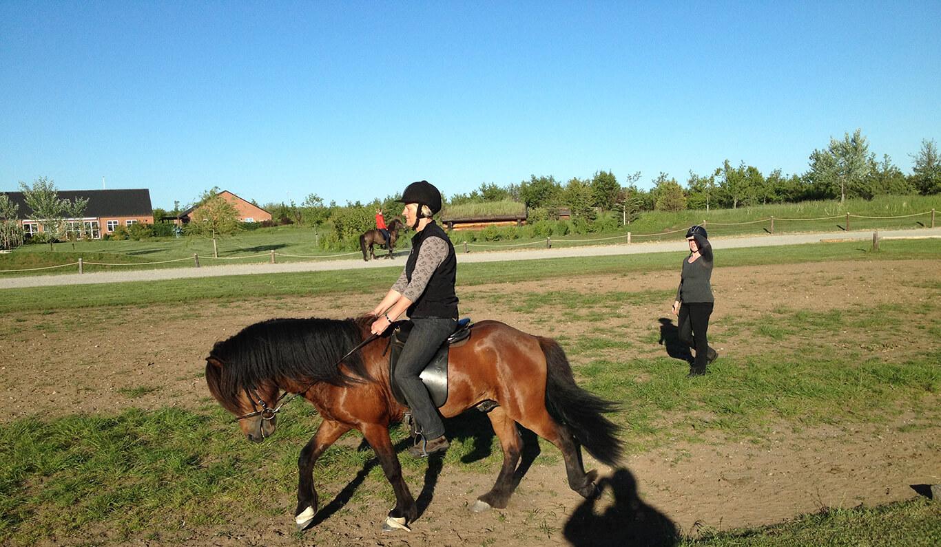 Rideundervisning Stutteri Torsbjerg 2
