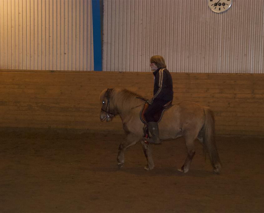 Rideundervisning Stutteri Torsbjerg 5