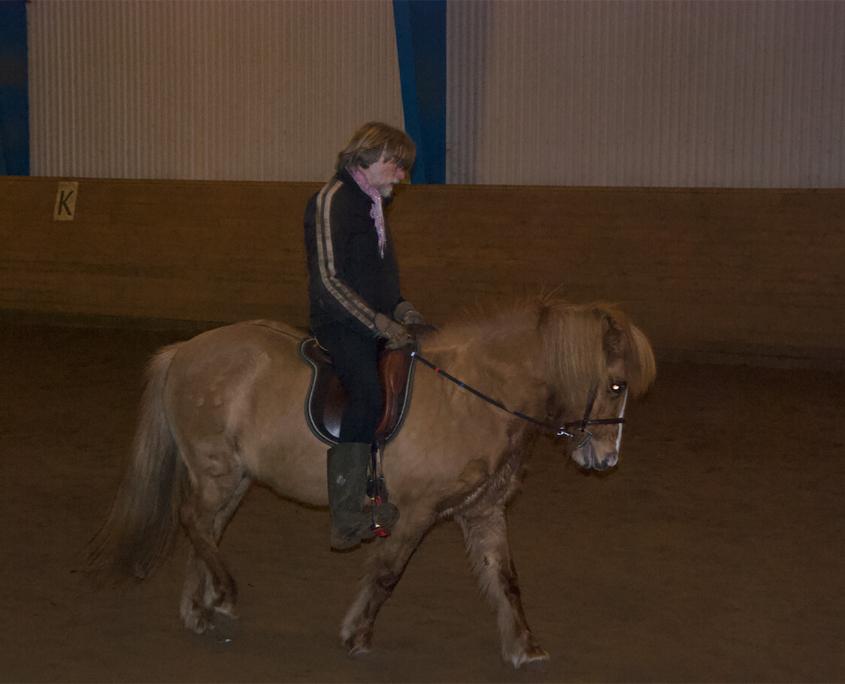 Rideundervisning Stutteri Torsbjerg 6